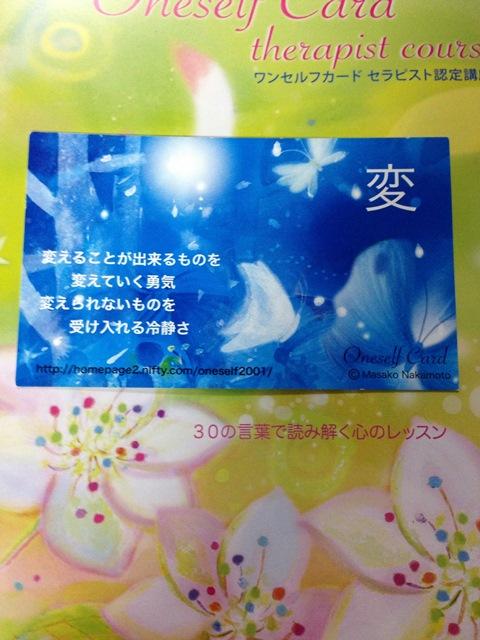 k236 黄色い戦士/青い鷲